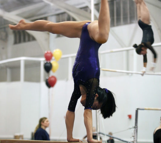 Team Gymnastic image